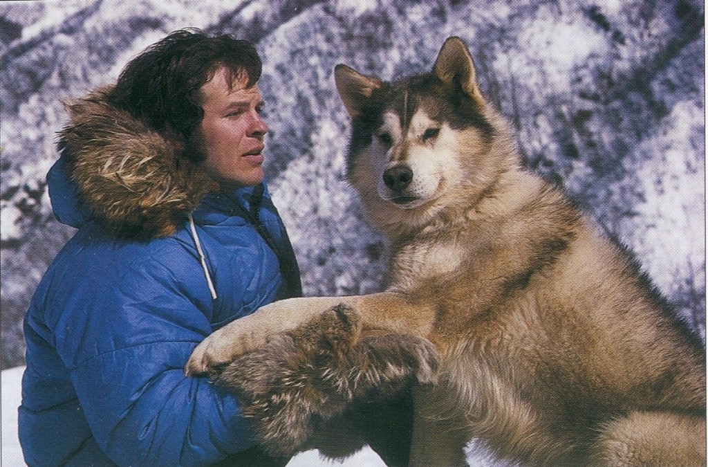 Rod Perry with his lead dog Fat Albert after the 1974 Iditarod. (Photo courtesy of Bill Devine)